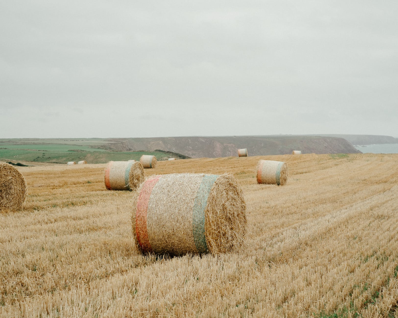 hay bales on dry grassy field in countryside